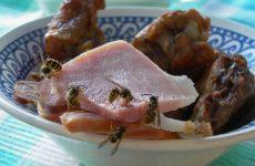Wespen eten vlees